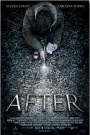 Movie Review – After(2012)