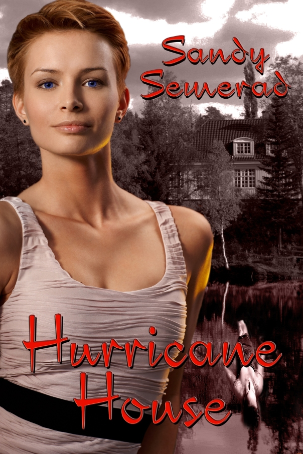 New Cover BWL Hurricane House - Copy