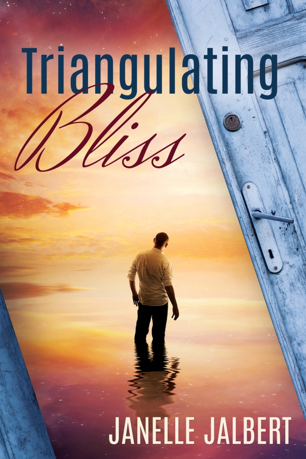 MediaKit_BookCover_TriangulatingBliss