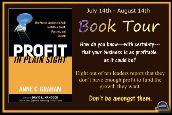 Profit in Plain Sight banner
