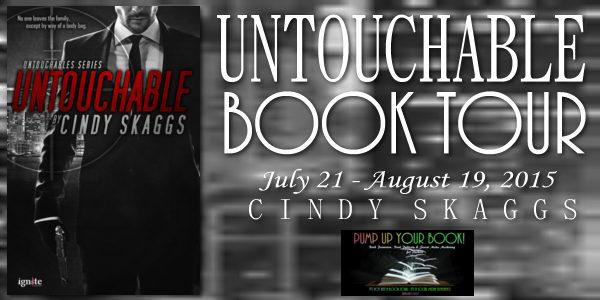Untouchable Book Banner