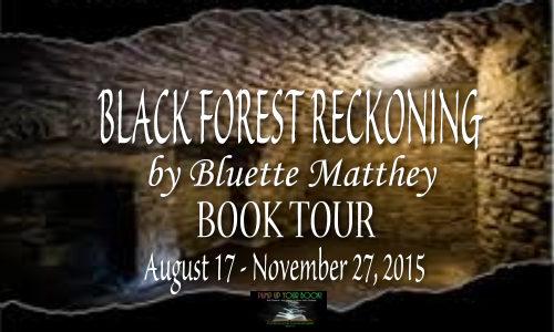 Black Forest Reckoning Book Banner