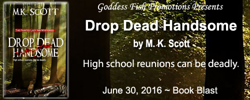 BB_DropDeadHandsome_Banner copy