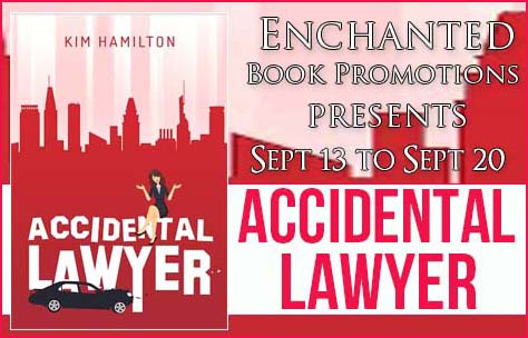 accidentallawyerbanner