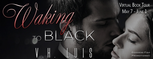 TourBanner_Waking to Black
