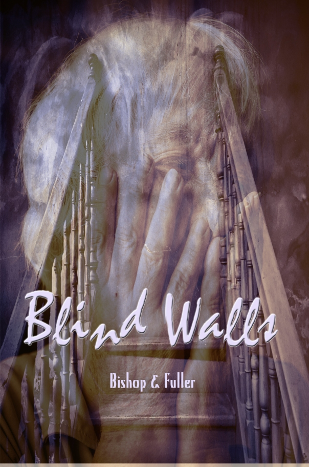 Cover_Blind Walls