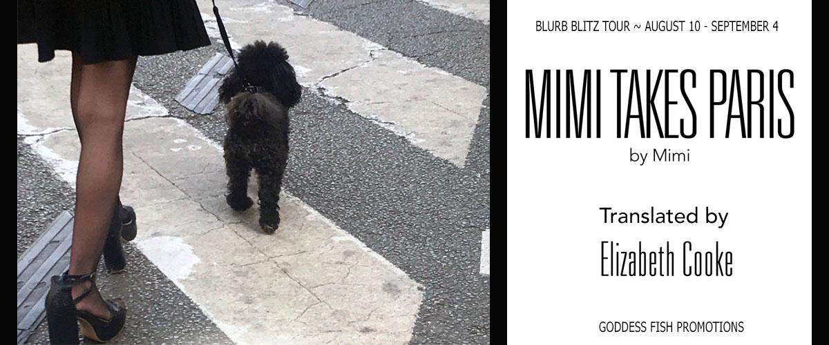 TourBanner_Mimi Takes Paris